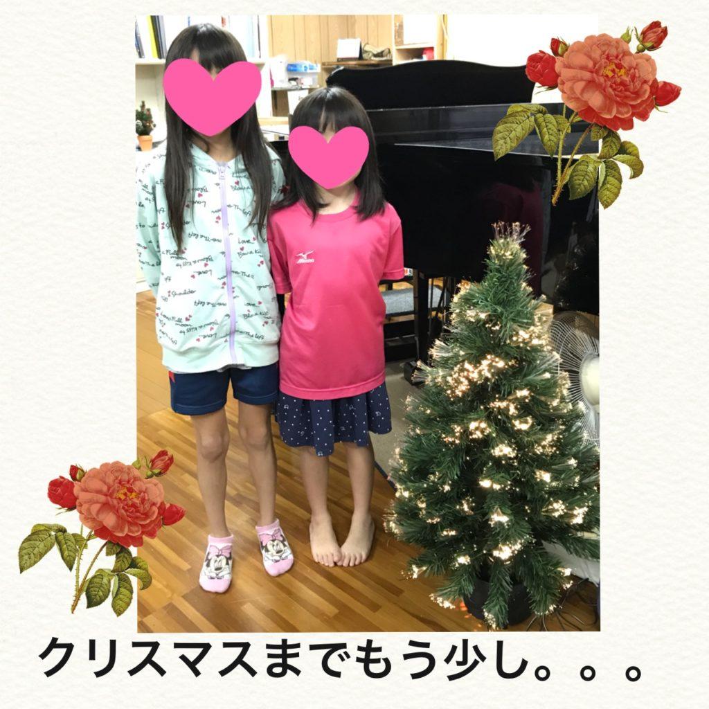 クリスマスツリーを飾ってみました